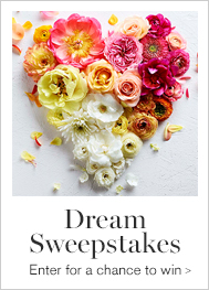 Dream Sweepstakes >