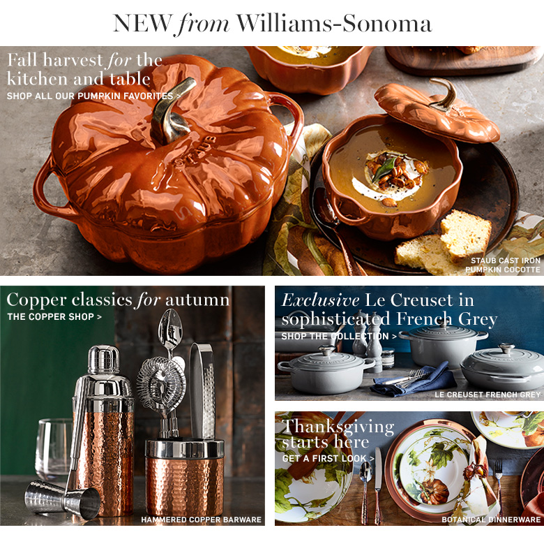 New from Williams-Sonoma