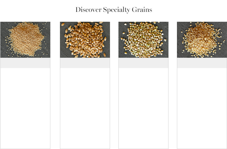 Discover Specialty Grains