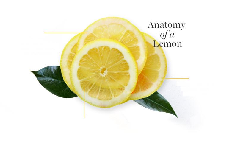 Anatomy of a Lemon