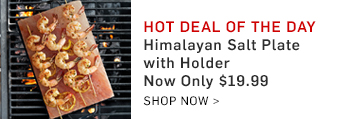 Himalayan Salt Plate with Holder Now Only $19.99 >