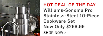 Williams-Sonoma Pro Stainless-Steel 10-Piece Cookware Set Now Only $299.99
