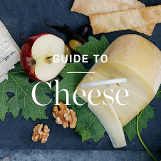 Guide to Cheese >