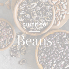 Guide to Beans >