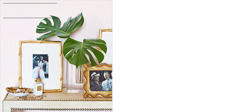 Shop All of AERIN's Collection >