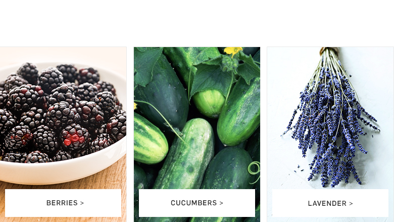 Seasonal Ingredients