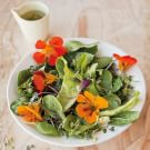 Spring Greens and Flowers Salad