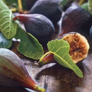 All About Figs