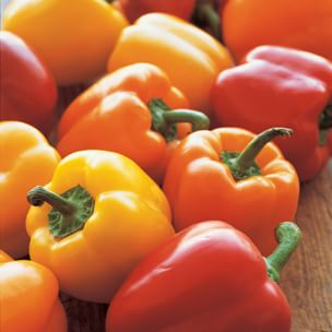 All About Bell Peppers