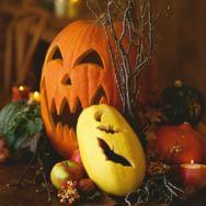 Carving Pumpkins and Squash