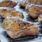 Chicken with Mustard-Herb Topping