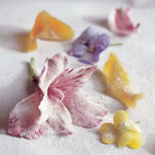 Candying Fresh Flowers<br>and Citrus Zest