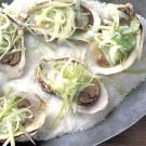 Oysters on the Half Shell with Apple-Horseradish Slaw