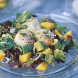 Scallop, Mango and Avocado Salad