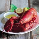 Steamed Lobster with Drawn Butter
