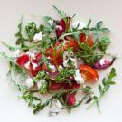 Heirloom Tomato and Plum Salad with Raspberry Vinaigrette, Goat Cheese and Arugula Pesto