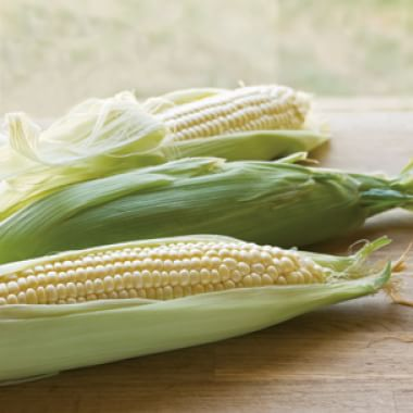 All About Corn