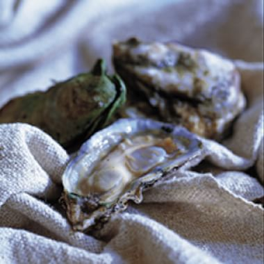 Oyster Glossary
