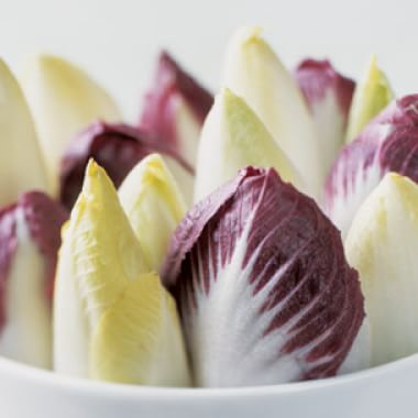 All About Chicories