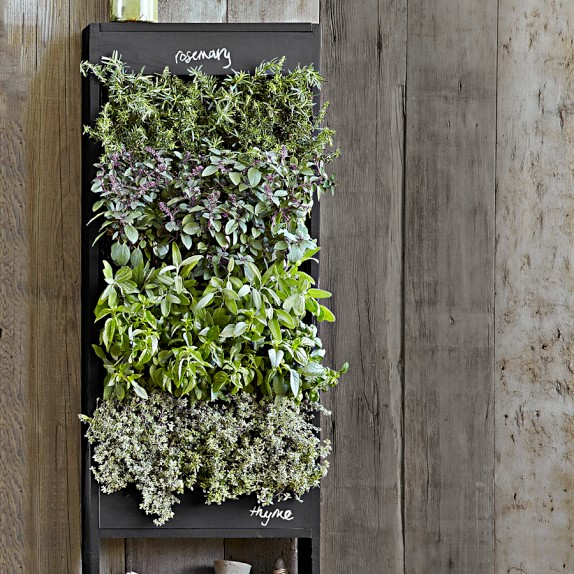 Free standing vertical chalkboard garden williams sonoma for Indoor gardening kalamazoo