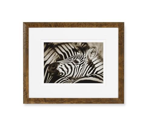 Safari Animals with Burled Wood Frame, Zebra