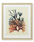 Oversized Coral Branches Print, B