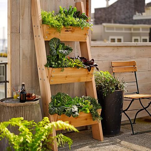 Farmer D 3-Tier Vertical Wall Garden