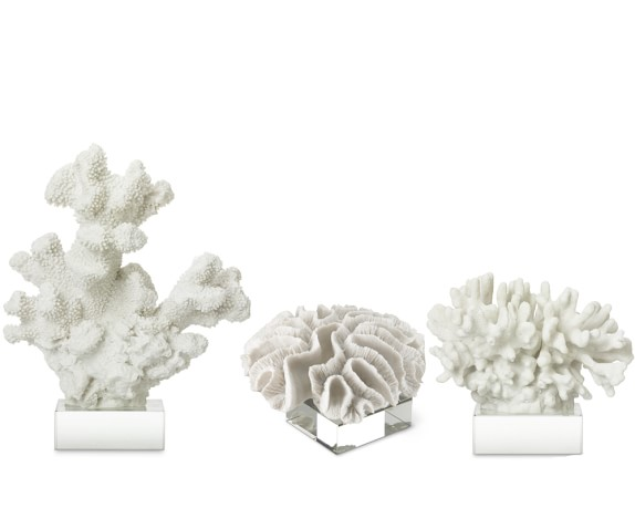 White Coral On Glass Stand, Set of 3