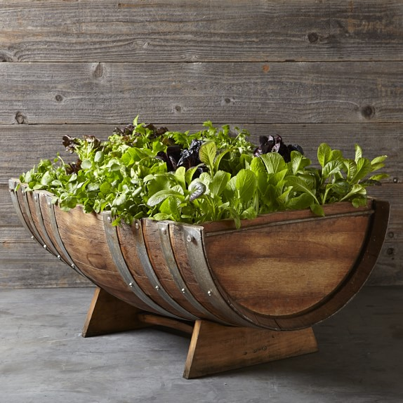Reclaimed wine barrel planter williams sonoma for Diy wine barrel planter