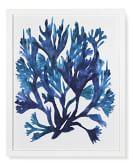 Oversized Indigo Coral Print, A