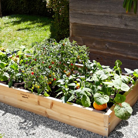 Farmer D Cedar Raised Bed Kit, 3'x6'x10
