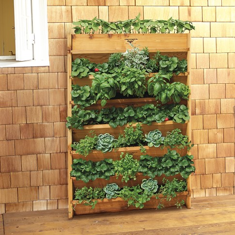 Gronomic Cedar Vertical Planter
