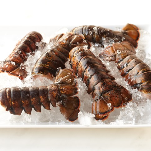 Lobster Tails, Set of 6