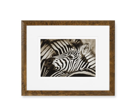 Safari Animals with Burled Wood Frame, Zebra