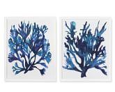 Oversized Indigo Coral Print, Set of 2