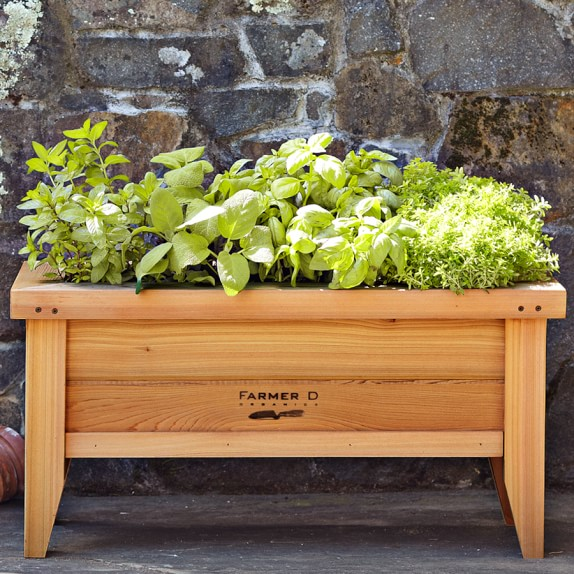 Farmer D Cedar Urban Planter