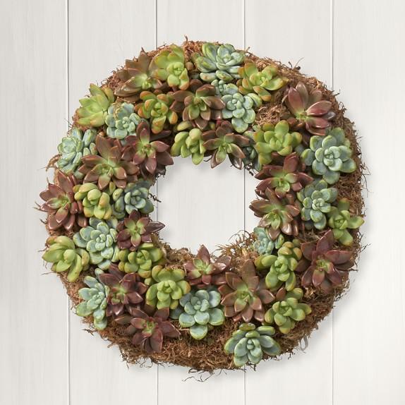Succulent Wreath, 12