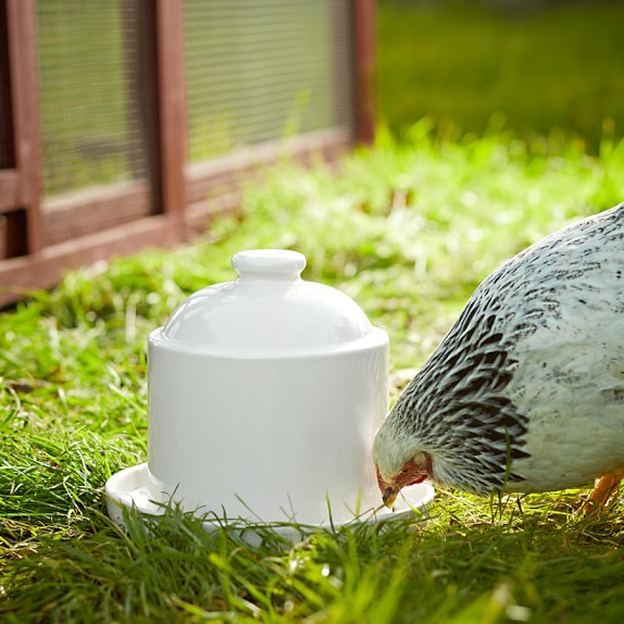 Stoneware Chicken Waterer