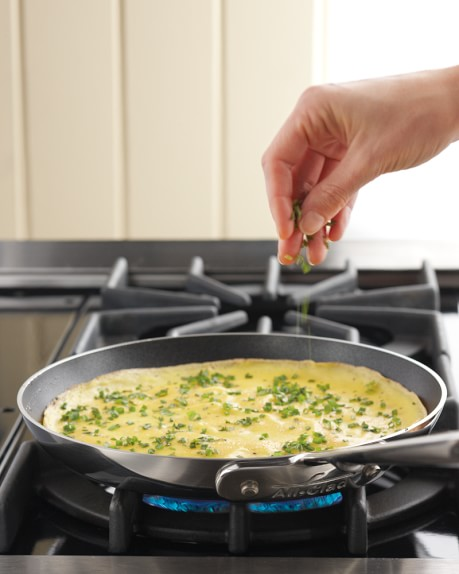 """All-Clad d5 Stainless-Steel Nonstick Omelette Pan, 9"""""""