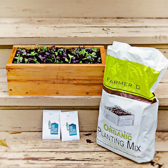 Farmer D Herb Box with Heirloom Seeds and Organic Soil