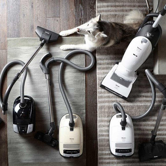 Miele dynamic u1 cat dog vacuum williams sonoma for Miele cat dog