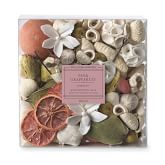 Williams Sonoma Pink Grapefruit Potpourri