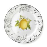 Citrus Dinner Plates, Set of 4