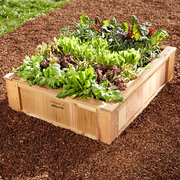 Farmer D French Raised Bed, Cedar