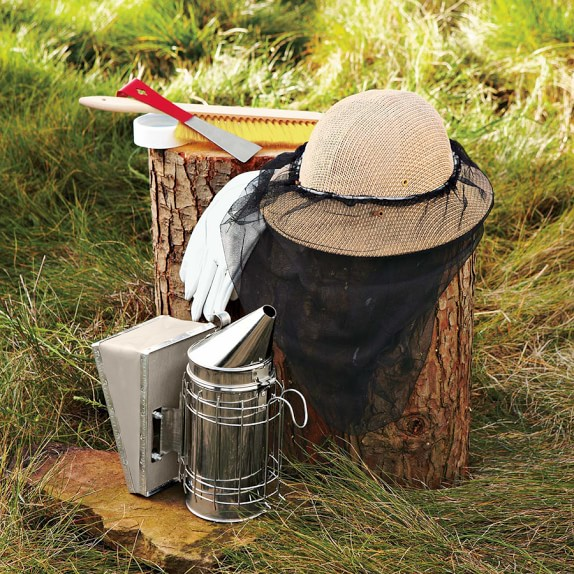 Backyard Beehive Starter Kit