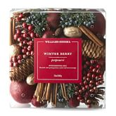 Williams Sonoma Winter Berry Potpourri