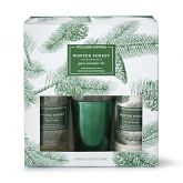 Williams Sonoma Winter Forest Guest Set