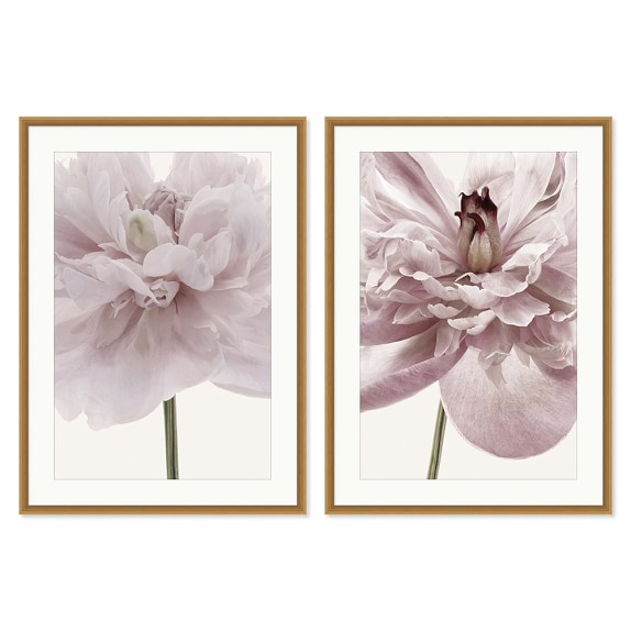 AERIN Dusted Floral, Set of 2